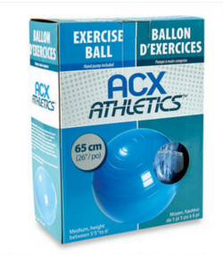 exerciseball2
